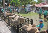 Associação Rural de Bagé - Parque Visconde de Ribeiro Magalhães
